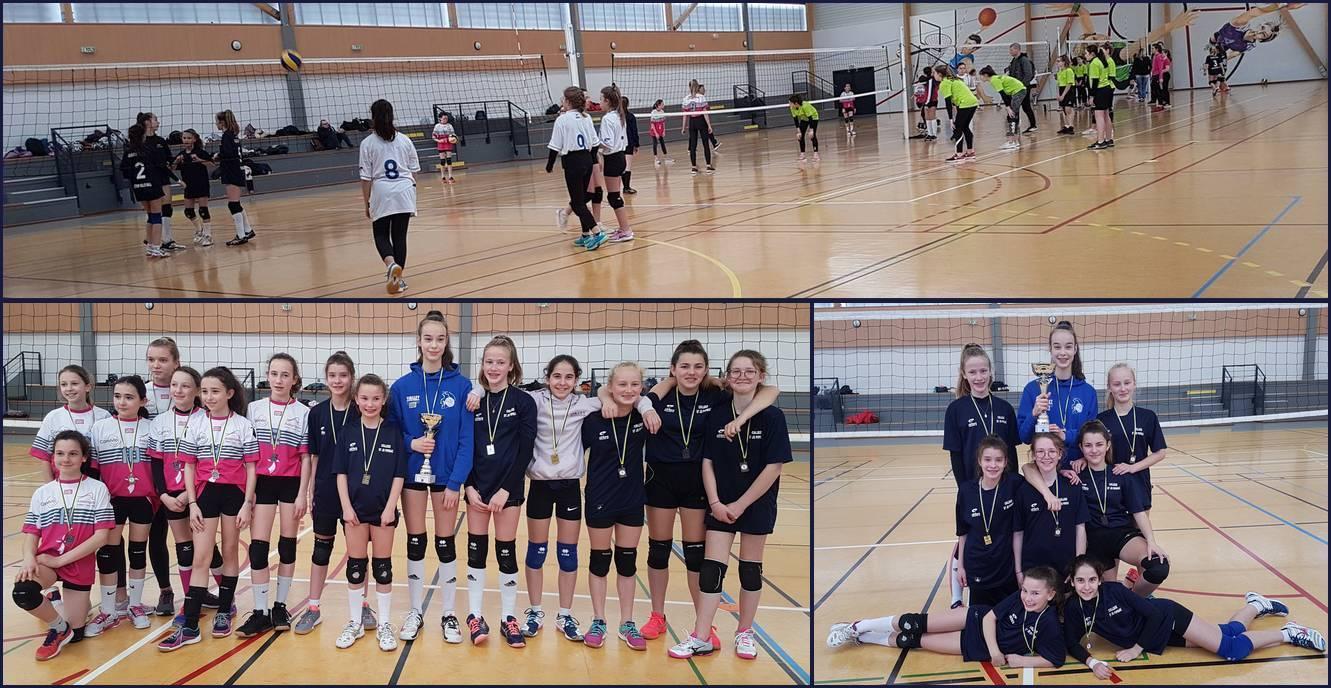 Volley4c.jpg